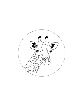 Ronde Stickers (Papier / 4...