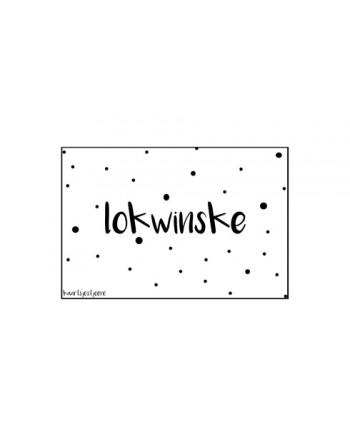Minikaartje - Lokwinske