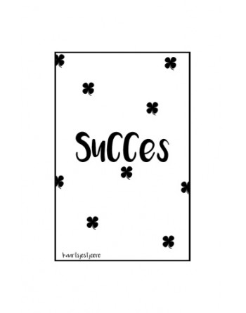 Minikaartje - Succes